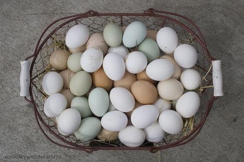 Basket of beautiful eggs