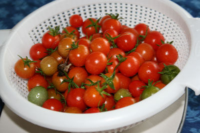 Strainer-of-cherry-tomatoes